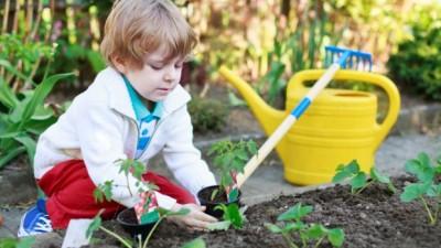 Semana da Atenção à saúde e alimentação infantil